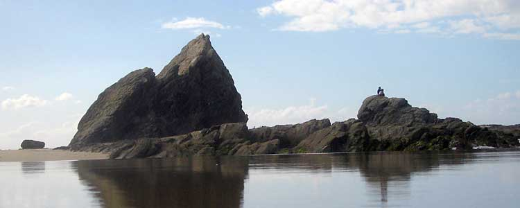 Currumbin Rocks