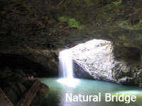 Natural Bridge - Lamington National Park
